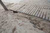 Damaged boardwalk after storm. — Stock Photo