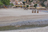 Erosion by reedbed of Camp de Mar Andratx Majorca. — Stock Photo
