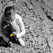 Girl plants a flower in the dried ground — Stock Photo
