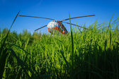 Helicopter on a green grass meadow with blue sky — Stock Photo