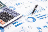 Blue business charts, graphs, information and reports — Stock Photo