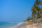 The Varkala Beach with black sand, rocks and palm trees — Stock Photo