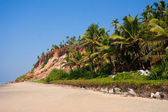 Varkala Beach, with views of the coast to the cliff — Stock Photo