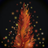 Different fire flames on a black background with lights — Stock Vector