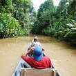 Stock Photo: Paddling in Amazon rainforest, Ecuador