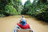 Paddling in Amazon rainforest, Ecuador — Stock Photo