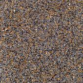 Blue poppy seed — Stock Photo