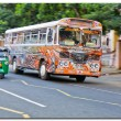 Regular public bus Sri Lanka — Stock Photo