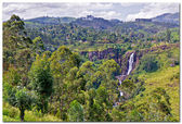 View of Sri Lanka in the Mountains near Nuwara Elyia — Stock Photo