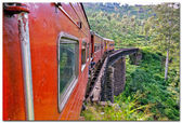 Train and bridge, Sri Lanka — Stock Photo