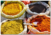 Sri Lanka spices — Stock Photo
