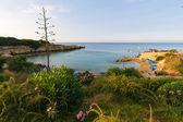 Protaras beach, Cyprus — Stock Photo