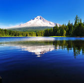 The Mount Hood reflection in Trillium Lake — Stock Photo
