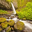 Upper ponytail falls — Stock Photo