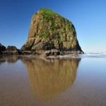 Beautiful reflection of Haystack Rock — Stock Photo