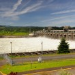 A view of Bonneville Dam — Stock Photo