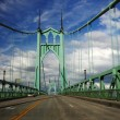A View of st Johns historic bridge — Stock Photo