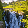 Beautiful View of myrtle falls — Stock Photo