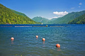 Lake Crescent at Olympic National Park, Washington, USA — Stock Photo