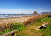 A beautiful beach near cannon beach — Stock Photo