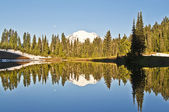 A beautiful reflection in tipsoo lake — Stock Photo