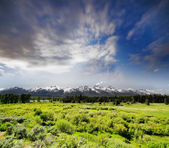 De grand tetons boven u uit nationaalpark in west wyoming. — Stockfoto