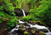 Beautiful view of Upper ponytail falls — Stock Photo