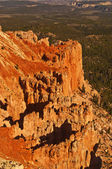 Beautiful view of bryce canyon national park — Foto Stock
