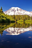 Mirror like reflection in bench lake — Stock Photo