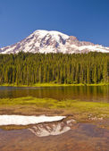 The Reflection Lake and Mt Rainier — Stock Photo