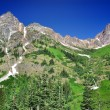 Stock Photo: View from North Cascades Hwy