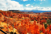 A view from Bryce Canyon Highway — Стоковое фото