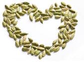 Cosed up Coriander Seeds — Stock Photo
