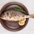 Grilled fish on plate, top view. — Stock Photo