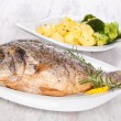 Stock Photo: Grilled fish.