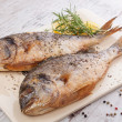 Delicious seafood background. — Stock Photo