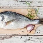 Seafood, luxurious mediterranean style. — Stock Photo