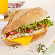 Chicken sandwich with fresh vegetables cheese. — Stock Photo #27176601