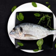 Fish on plate with fresh herbs, top view. — Stock Photo