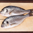 Sea bream on cutting board. — Stock Photo #27177011