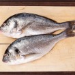 Sea bream on cutting board. — Stock Photo