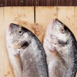 Two fish on wooden cutting board. — Stock Photo #27177047