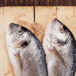 Two fish on wooden cutting board. — Stock Photo