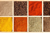 Spices collection. — Stock Photo