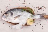 Fundo de peixe luxuoso. frutos do mar. — Foto Stock