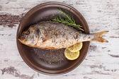 Luxurious seafood. — Stock Photo