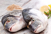 Two fresh fish. — Stock Photo