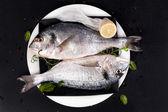 Deliciosos frutos do mar. — Fotografia Stock