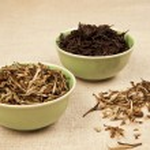 zelený a černý čaj — Stock fotografie