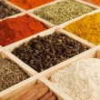 Spices variation. — Stock Photo